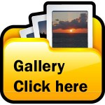Gallery-Icon2